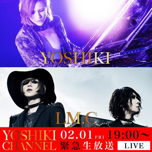 Y_M.jpg